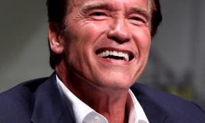 Arnold Schwarzenegger: Sen o moci