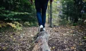 Vytrvalost: Cesta k úspěchu