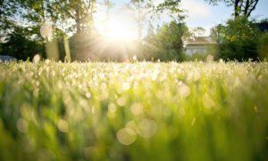 Jóga: Nastartujte svůj den, ranní meditací!