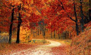 Podzimní místa, která vám učarují, kam vyrazit?